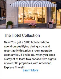 Screenshot_2019-06-26 American Express - Premier Rewards Gold Card Card Benefits American Express.png