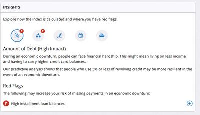 Amount of Debt - FICO explanation