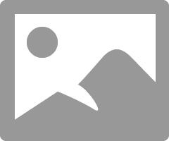 April Rain Umbrella 2.png