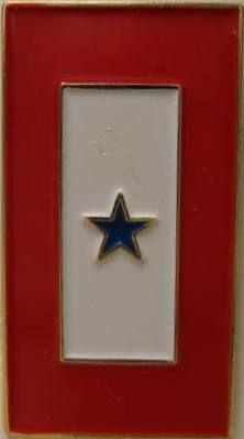 In Service Flag.JPG