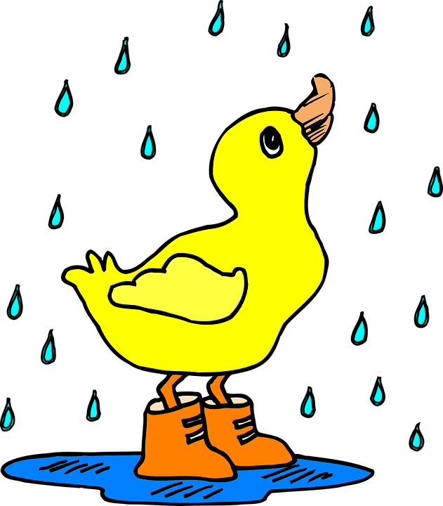 DuckPuddle.png