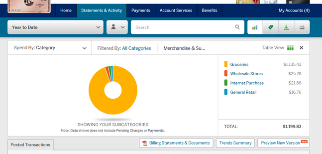 Screenshot_2019-07-02 American Express US Manage Your Card Account Online Statement.png
