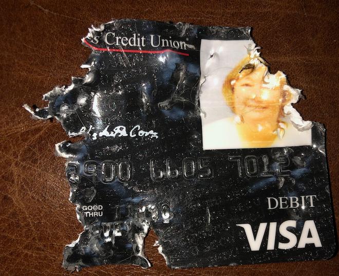 dogatemydebitcard.png